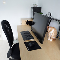 节省桌面空间 创造多种用途:Ergotron 爱格升 LX显示器 支架