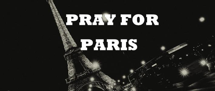 专题:巴黎袭击后,防暴反恐手册介绍,我们如何应对危机