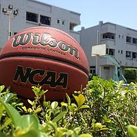 性价谁更值得买?!Wilson 威尔胜 NCAA 0730 solution PU复刻版篮球 VS Spalding 斯伯丁 74-604Y掌控
