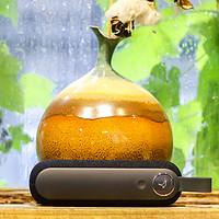 入手一个奇葩造型蓝牙音箱:Libratone 利勃登(小鸟音响)Too便携无线音箱分享