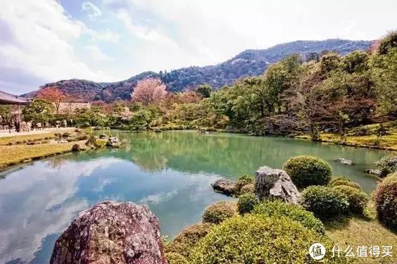 日本京都|辣妈萌宝游京都,感受一座古都的优雅与从容