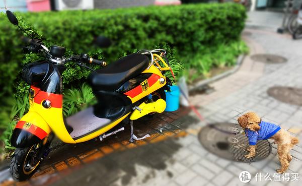 Please Call me Rider — 大叔追风记 龙嘉V咖 摩托 篇一:选车难