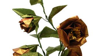 《立体之花》和我的作品 (有3D哦)