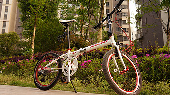 DAHON  大行 P8 折叠自行车 KBC083Y 骚包配色版