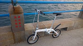 海边遛弯儿的代步玩具:美国 DAHON 大行 BYA412 折叠自行车
