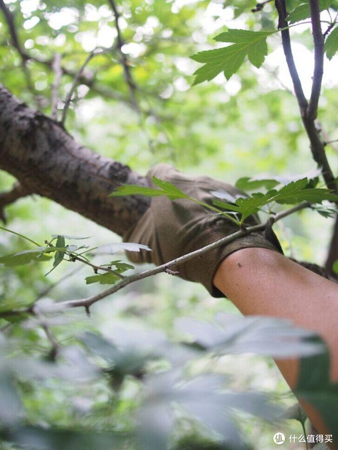 多款低端战术手套不专业入门对比评测