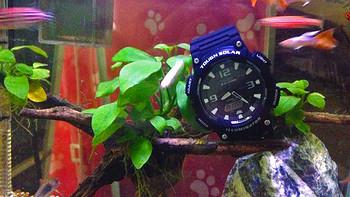 简单满足需求的运动腕表 — CASIO 卡西欧 AQ-S810W-1AV