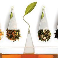 专题:方寸之间茶香四溢——世界高品质袋泡茶推荐