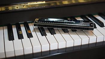 音乐入门小乐器,晒晒我的天鹅复音口琴