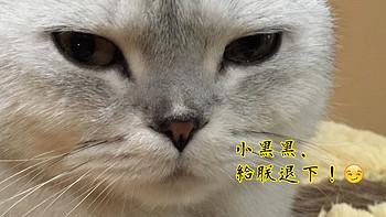 #最美梳妆台# 黑头君狗带记(科科真人shou)