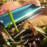 小身材,高颜值——SUZUKI 铃木 OLIVE C-20 口琴