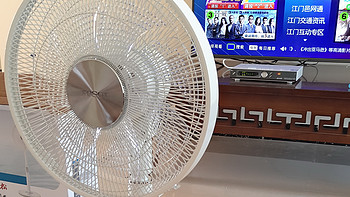 新居第一把风扇:GREE 格力 大松FSZ-3008BG7 直流变频 开箱