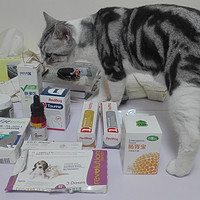 科学养好喵 篇五:#一周热征#宠物用品#猫猫补品药品推荐