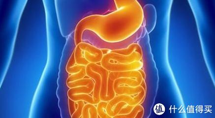光吃不动也能减-生酮减肥法从入门到精通 篇二:暴瘦40斤背后的风险-警示篇