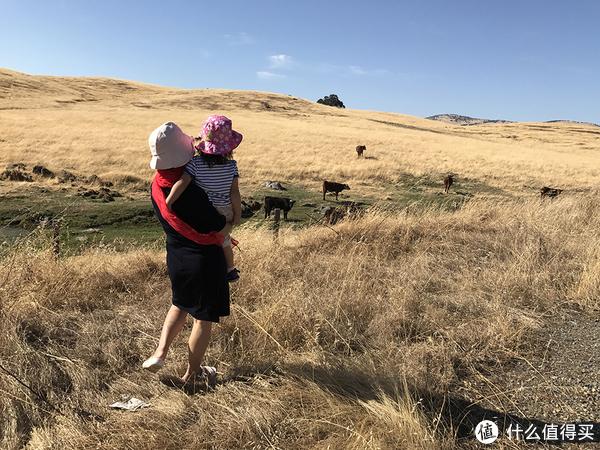 旧金山西雅图深度游+免税州买买买,一家老小美西自驾18天