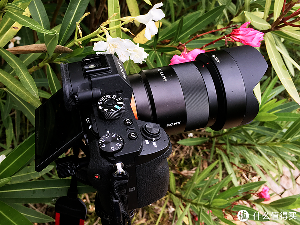 Sony 索尼 A7R2 A7RM3 微单相机视频录制全攻略