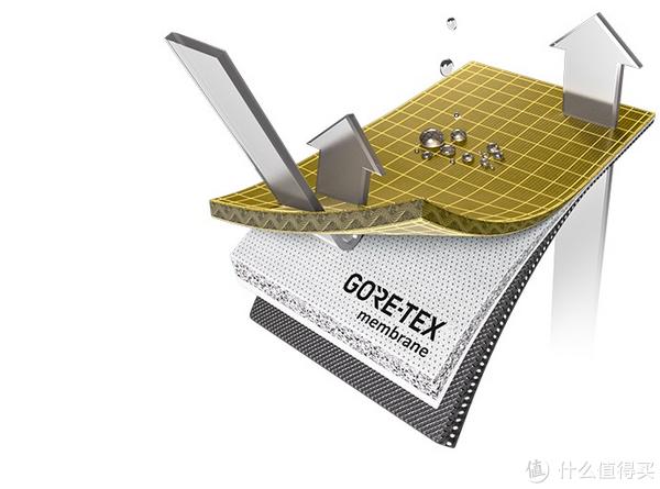 已GTX为例,三层的结构