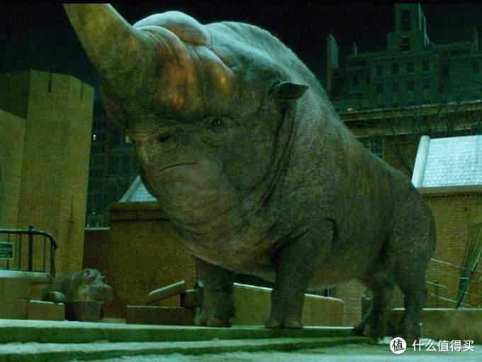这只神奇动物叫做Erumpent,译作角毒兽,可不就是一只缺碘的大脖子犀牛么