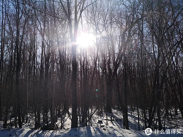 天气非常好,暖暖的阳光晒着,窗外的雪景看着,很慵懒