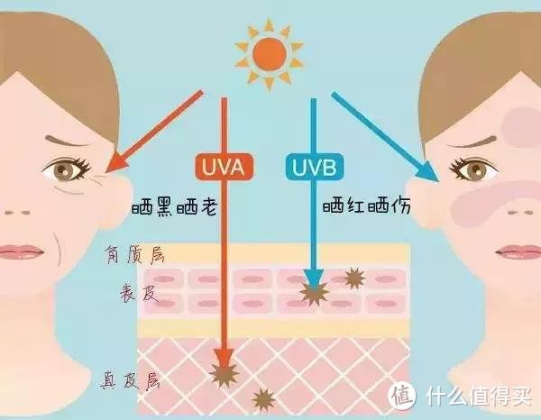 UVB、UVA的区别与对皮肤的作用原理