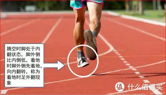 缓震型和稳定型跑鞋究竟有哪些区别?跑者该如何选择?