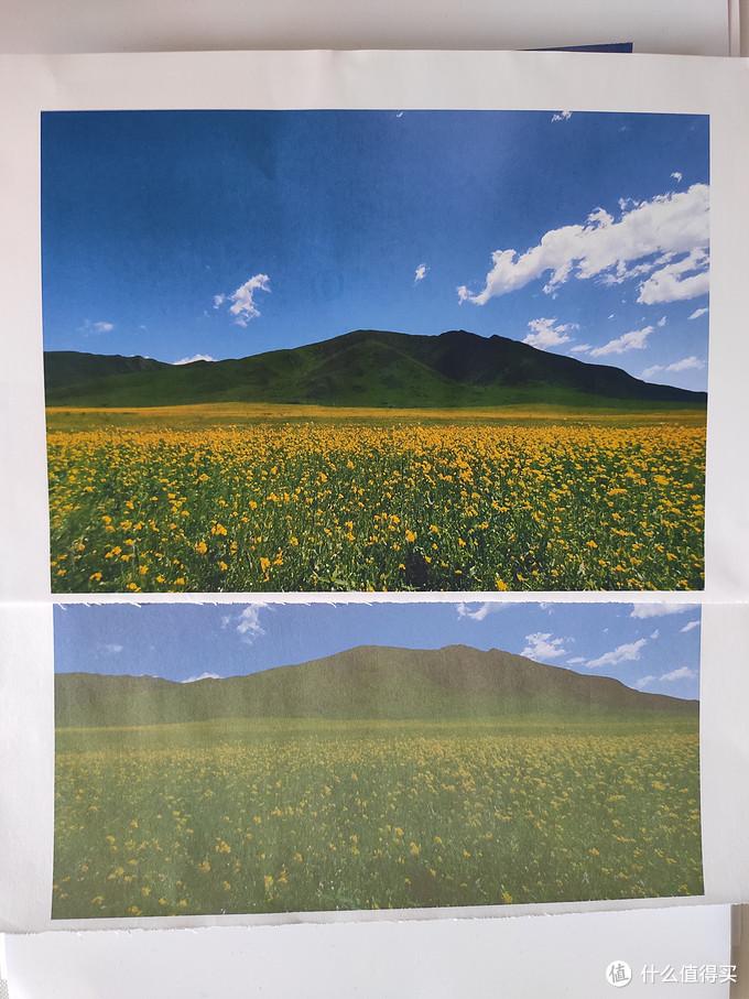 彩喷纸正反面打印效果对比