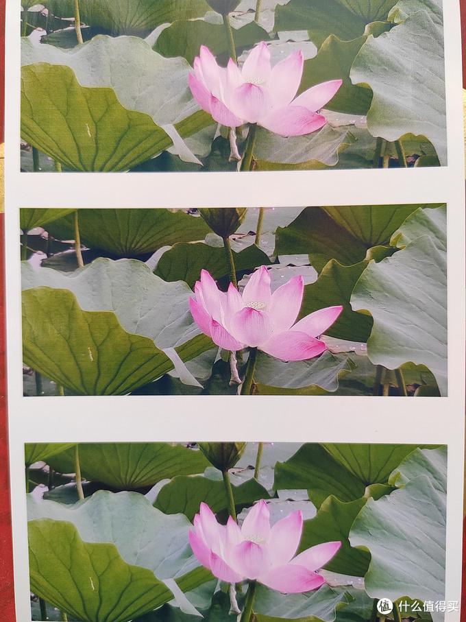 Photo Paper Glossy不同打印质量对比(从上到下依次为经济-标准-高)