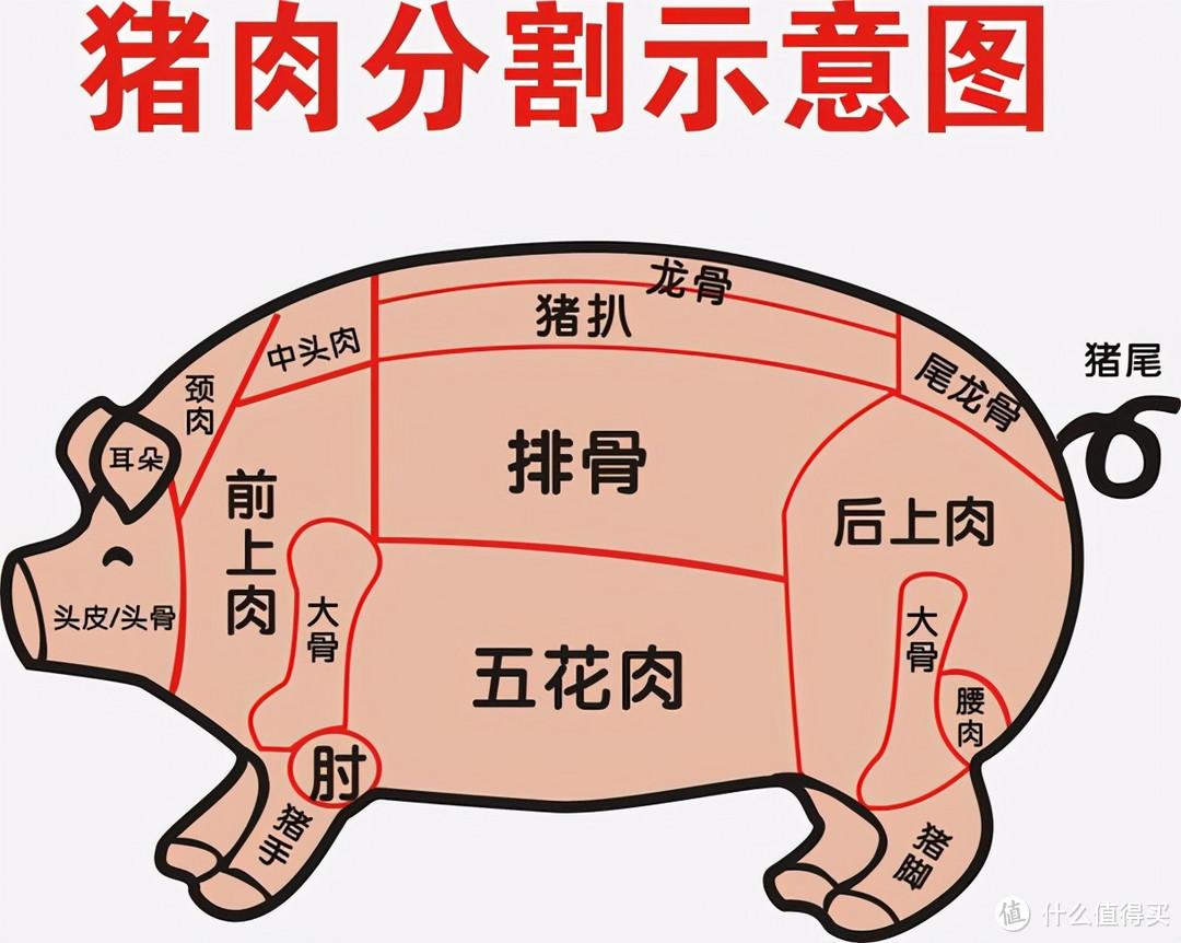 买五花肉,要分清上五花和下五花,差别挺大,弄懂再买不花冤枉钱