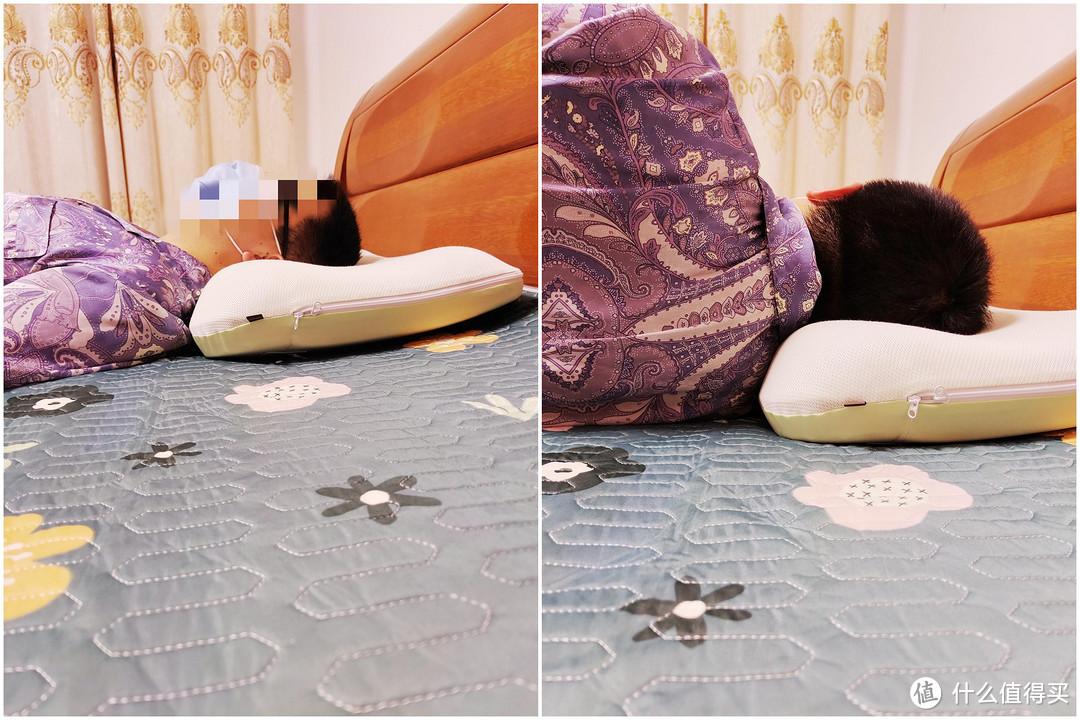 贴身肉搏8款枕头实测,最全横评带你看哪种枕头最舒服~包含决明子糖果枕、乳胶枕、凝胶枕、水枕哦~